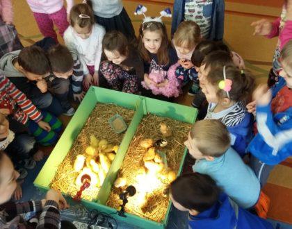 """Wielkanocne Edukacyjne Warsztaty Przyrodnicze """"Mali Odkrywcy Zwierząt"""""""
